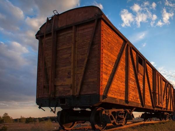 vagoni1